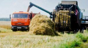 агрострахование урожая